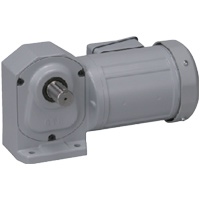 Brother H2 Gear Motor
