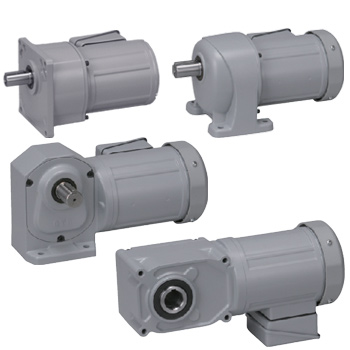 High Torque Three-Phase Brother Gear Motors